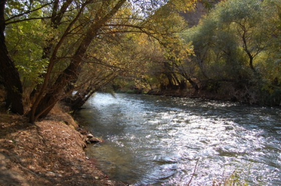 The Arpa river.