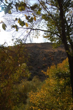 Autumn colors in the hills behind the Arpa.